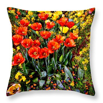 Springtime Throw Pillow by Olivier Le Queinec
