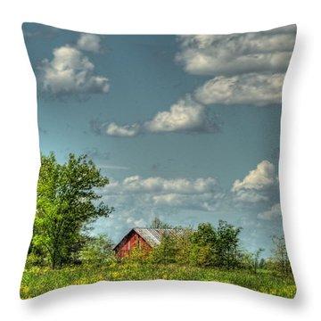 Springtime  Throw Pillow by Pamela Baker