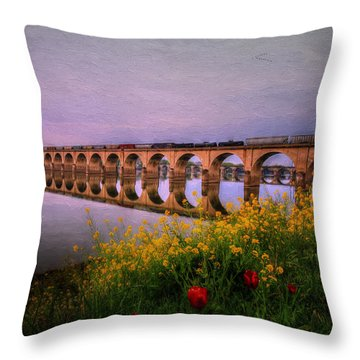 Springtime Reflections From Shipoke Throw Pillow