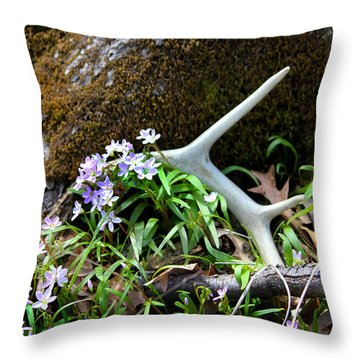 Springtime Shed Anter Throw Pillow
