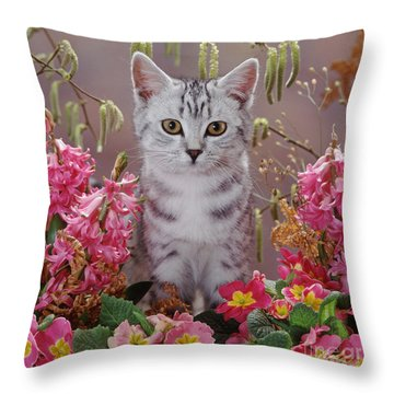 Springtime Silver Throw Pillow