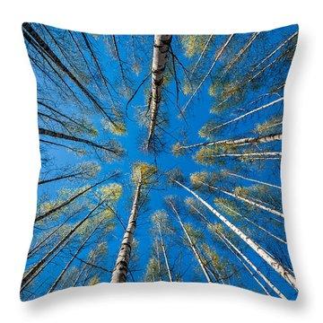 Springtime Throw Pillow by Torbjorn Swenelius