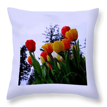 Springtime Wonder  Throw Pillow