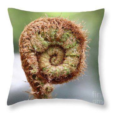 Sprout Of Ferns Throw Pillow by Michal Boubin