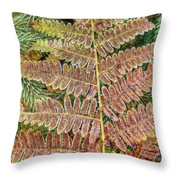 Sprout Of The Fern Throw Pillow