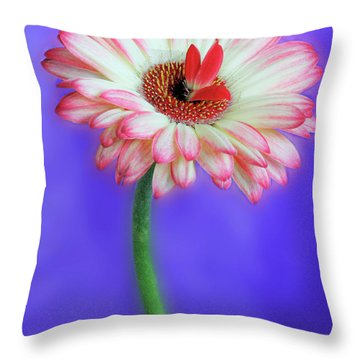 Sprouting Dahlia Throw Pillow