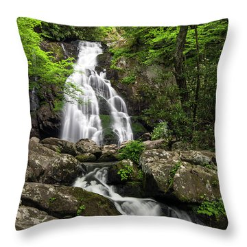 Throw Pillow featuring the photograph Spruce Flats Falls - D009919 by Daniel Dempster
