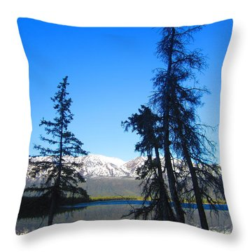 Spruce Stories Throw Pillow