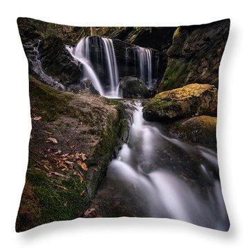 Sprucebrook Falls In Beacon Falls, Ct Throw Pillow