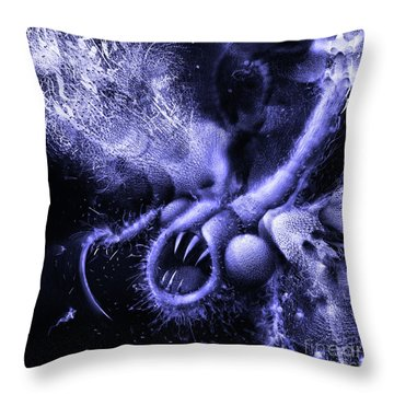 Throw Pillow featuring the digital art Squamafly Blue by Russell Kightley