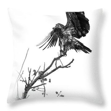 Squaw Creek Red-tail Throw Pillow