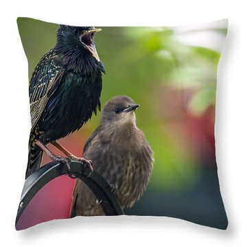 Squawker Throw Pillow