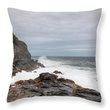 Squeaker Cove Throw Pillow