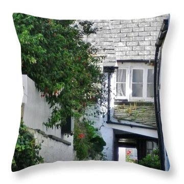 Squeeze-ee-belly Alley Throw Pillow