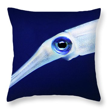 Throw Pillow featuring the photograph Squid by Anthony Jones