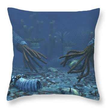 Squid-like Orthoceratites Attempt Throw Pillow