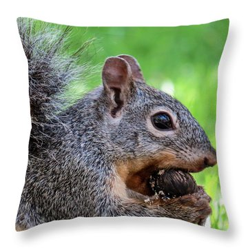 Squirrel 1 Throw Pillow