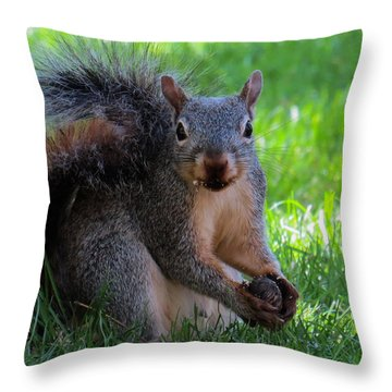 Squirrel 2 Throw Pillow