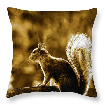 Throw Pillow featuring the photograph The Start Of A New Day  by Fine Art By Andrew David