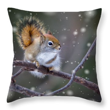 Squirrel Balancing Act Throw Pillow by Patti Deters