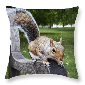 Squirrel Bench Throw Pillow