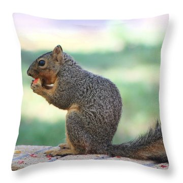 Squirrel Eating Crab Apple Throw Pillow by Colleen Cornelius