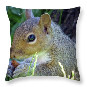Squirrel Eating Throw Pillow