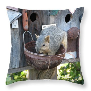 Squirrel Feeding Throw Pillow by Patricia Barmatz