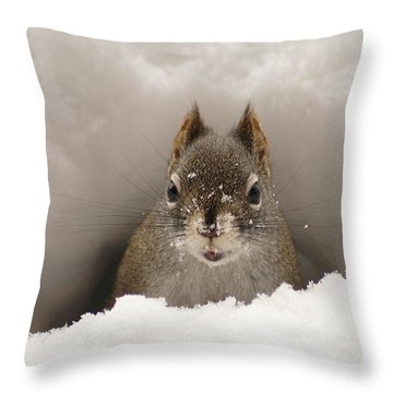 Squirrel In A Snow Tunnel Throw Pillow
