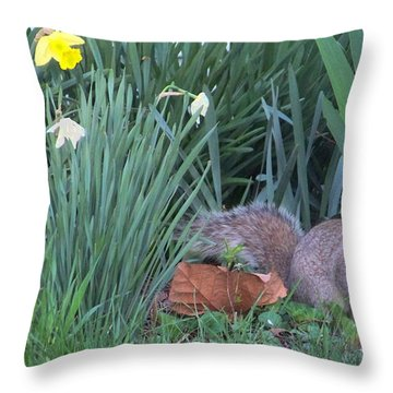 Squirrel In The Flowers Throw Pillow