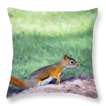 Squirrel In The Park Throw Pillow by Jeff Kolker