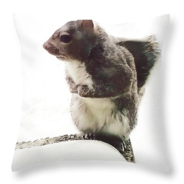 Throw Pillow featuring the photograph Squirrel In The Snow by Roger Bester