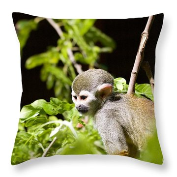 Squirrel Monkey Youngster Throw Pillow