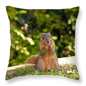 Squirrel On A Log Throw Pillow