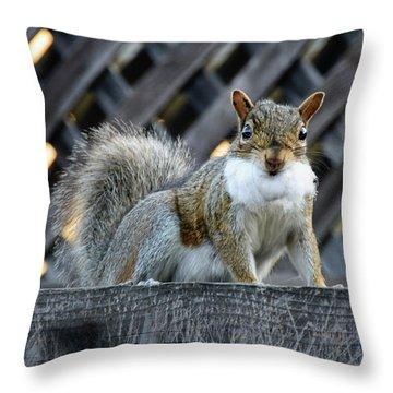 Squirrel Playing Santa Throw Pillow