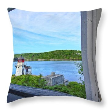 Squirrel Point View From The Deck Throw Pillow