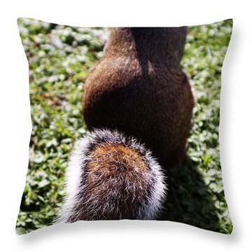 Squirrel S Back Throw Pillow