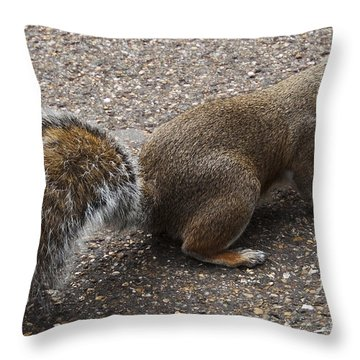 Squirrel Side Throw Pillow