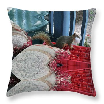 Squirrel Stealing Stuffing For A Nest Throw Pillow