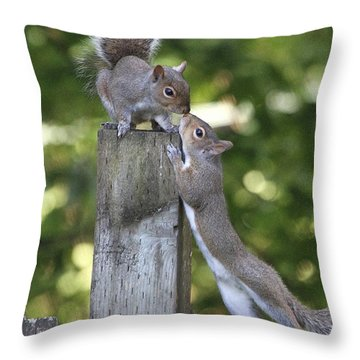 Squirrelly Affection Throw Pillow by Angie Vogel