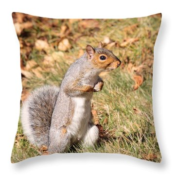 Throw Pillow featuring the photograph Squirrely Me by Debbie Stahre