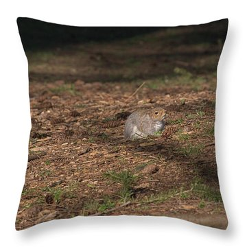 Squirrrrrrel? Throw Pillow
