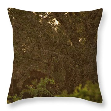 Sri Lankan Leopard And Wild Boar Throw Pillow