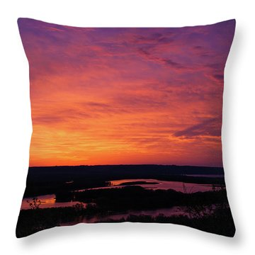 Srw-18 Throw Pillow