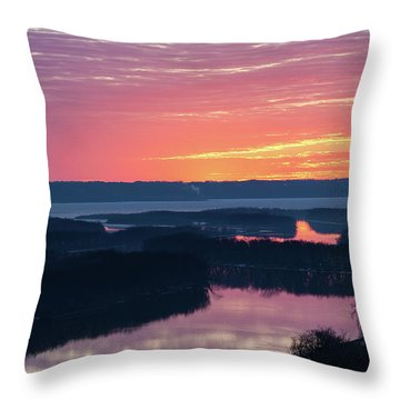 Srw-2 Throw Pillow