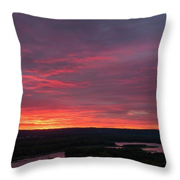 Srw-33 Throw Pillow