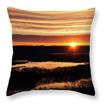 Srw-7 Throw Pillow