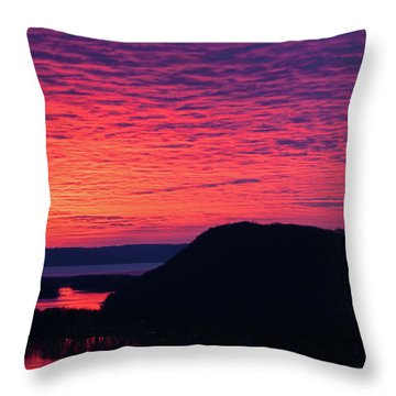 Srw-9 Throw Pillow