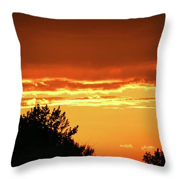 Ssl-1 Throw Pillow