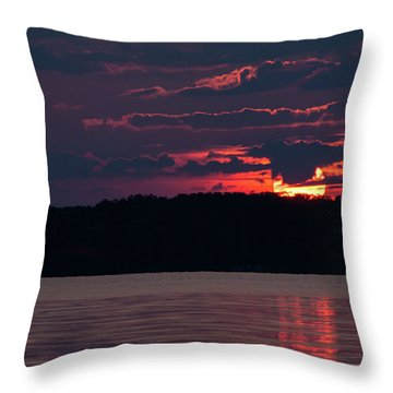 Ssp-1 Throw Pillow
